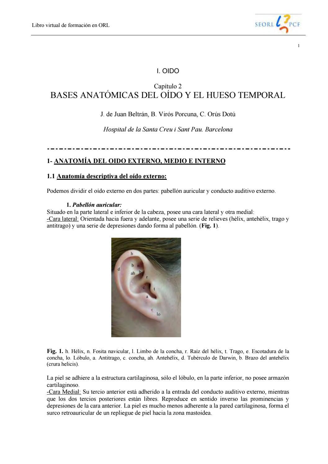 002 bases anatómicas del oído y el hueso temporal by BRANDON RENE ...