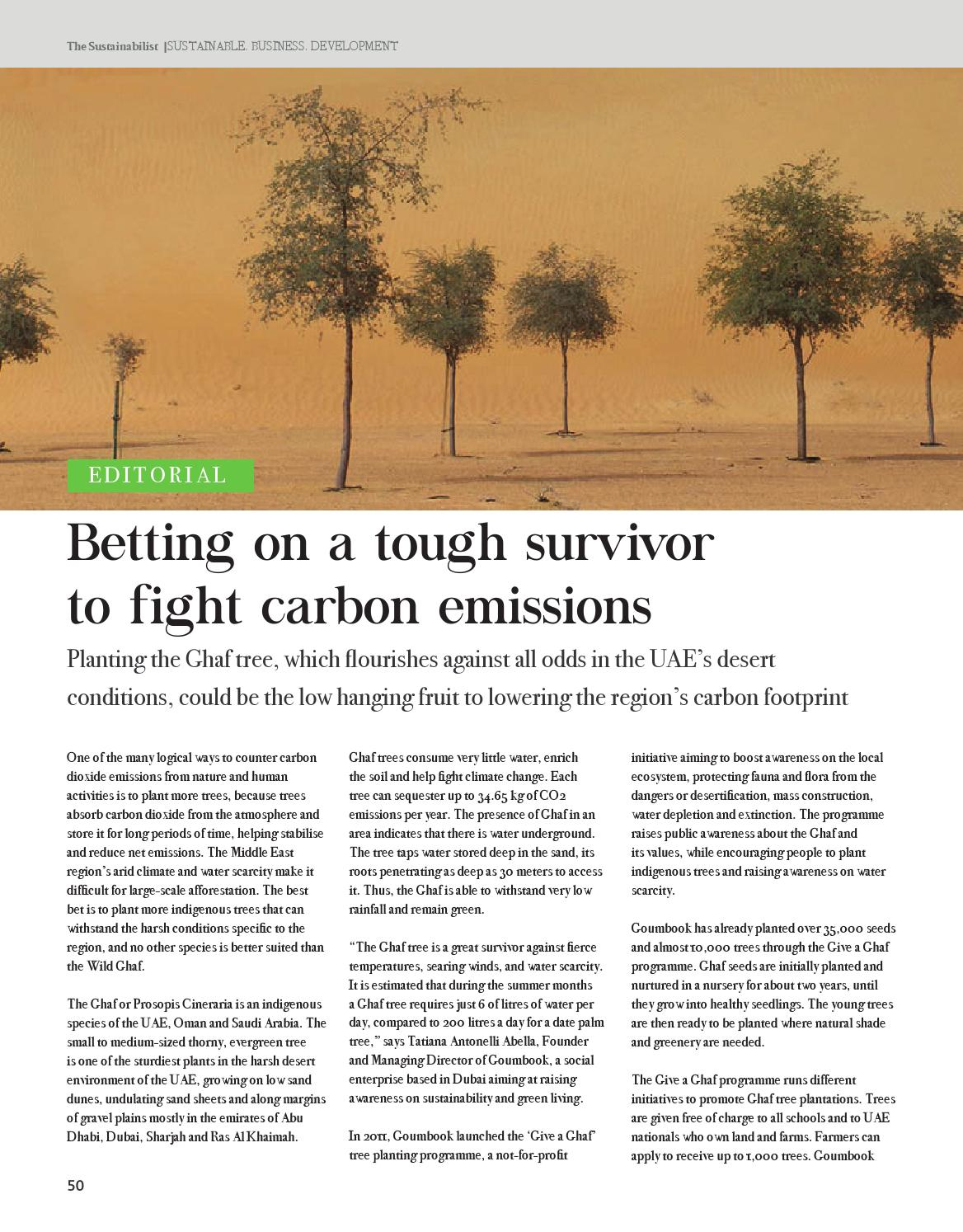 The Sustainabilist - Climate Change by Dubai Carbon - issuu