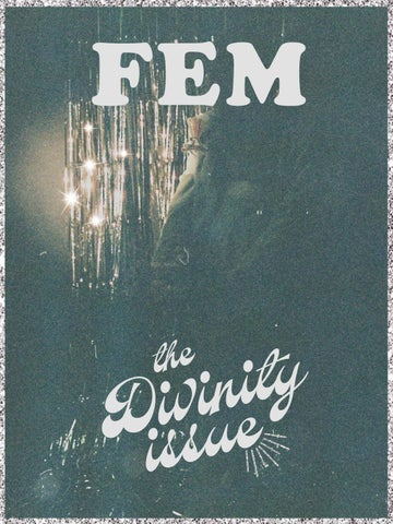 DIVINITY: FEM Fall 2017