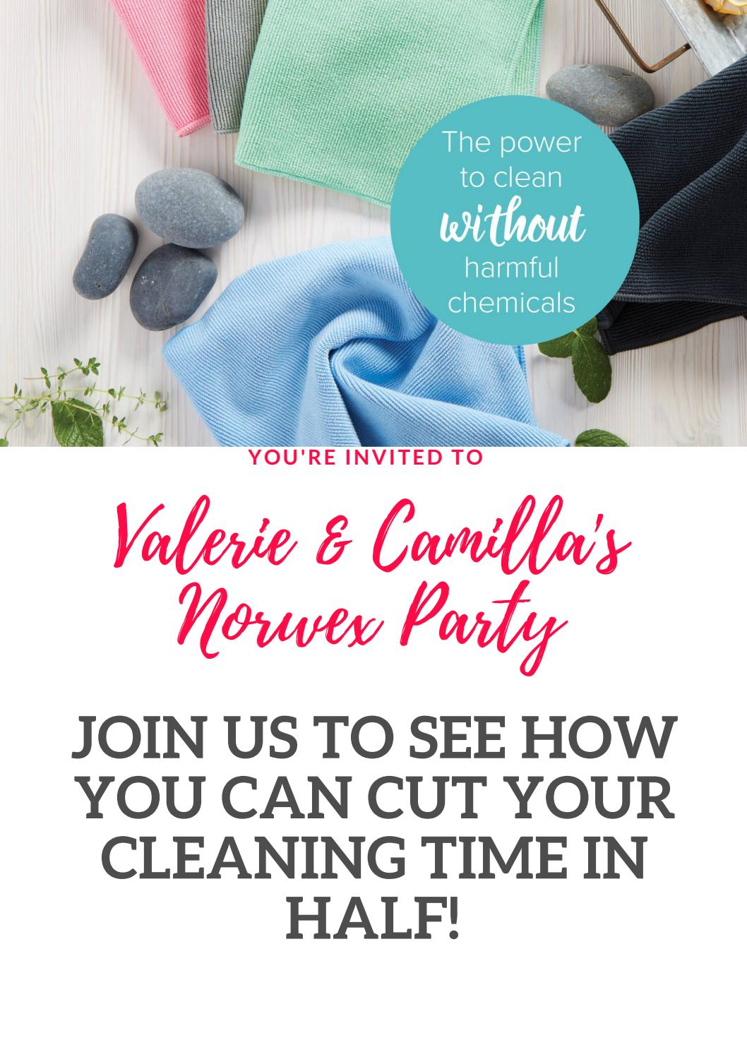 Valerie & Camilla\'s norwex party by gmford - issuu