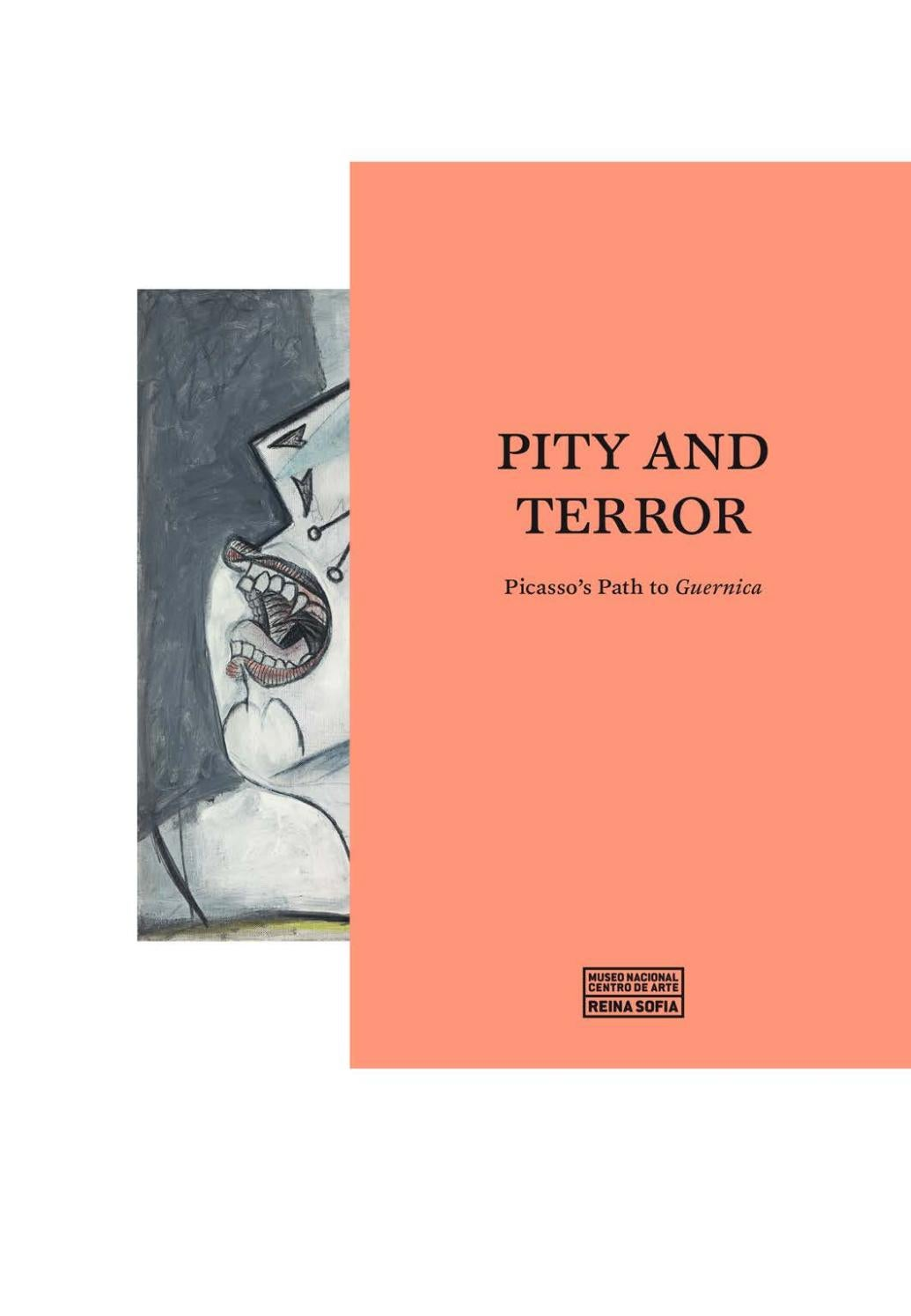 Pity And Terror Picasso S Path To Guernica By Museo Reina Sof A  # Bibliotheque Basse Fly