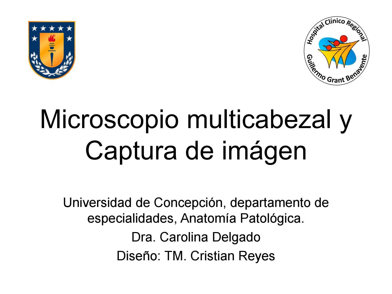 Funcionamiento y partes del microscopio bx53 by palmor357 - issuu