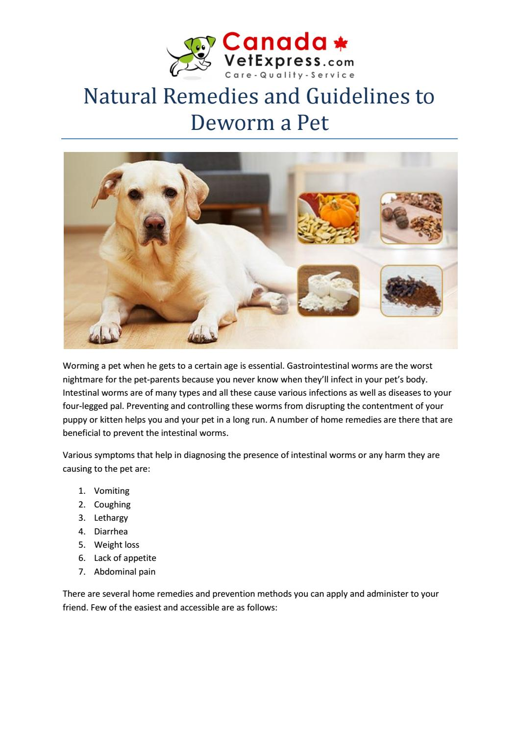 Natural Remedies And Guidelines To Deworm A Pet By Canadavetexpress