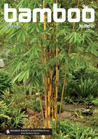 Bamboo Bulletin Free Magazine by Kelley Chapman - issuu