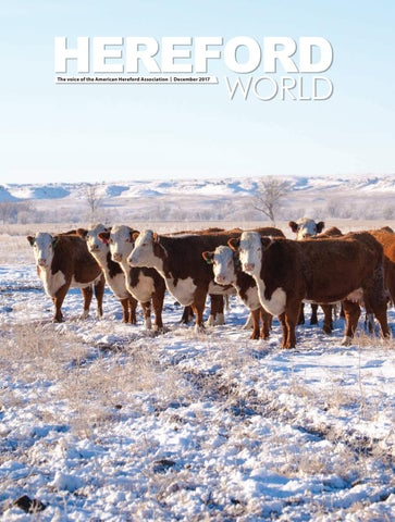 American Hereford | December 2017 Archives - American Hereford