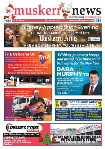 Blarney Macroom CEO Report Final March 6th 2017 - County