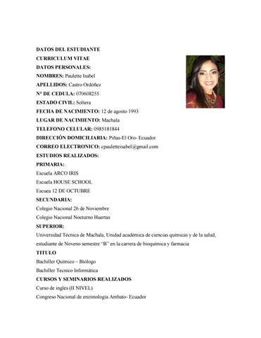Curriculum Vitae By Paulette Castro Issuu
