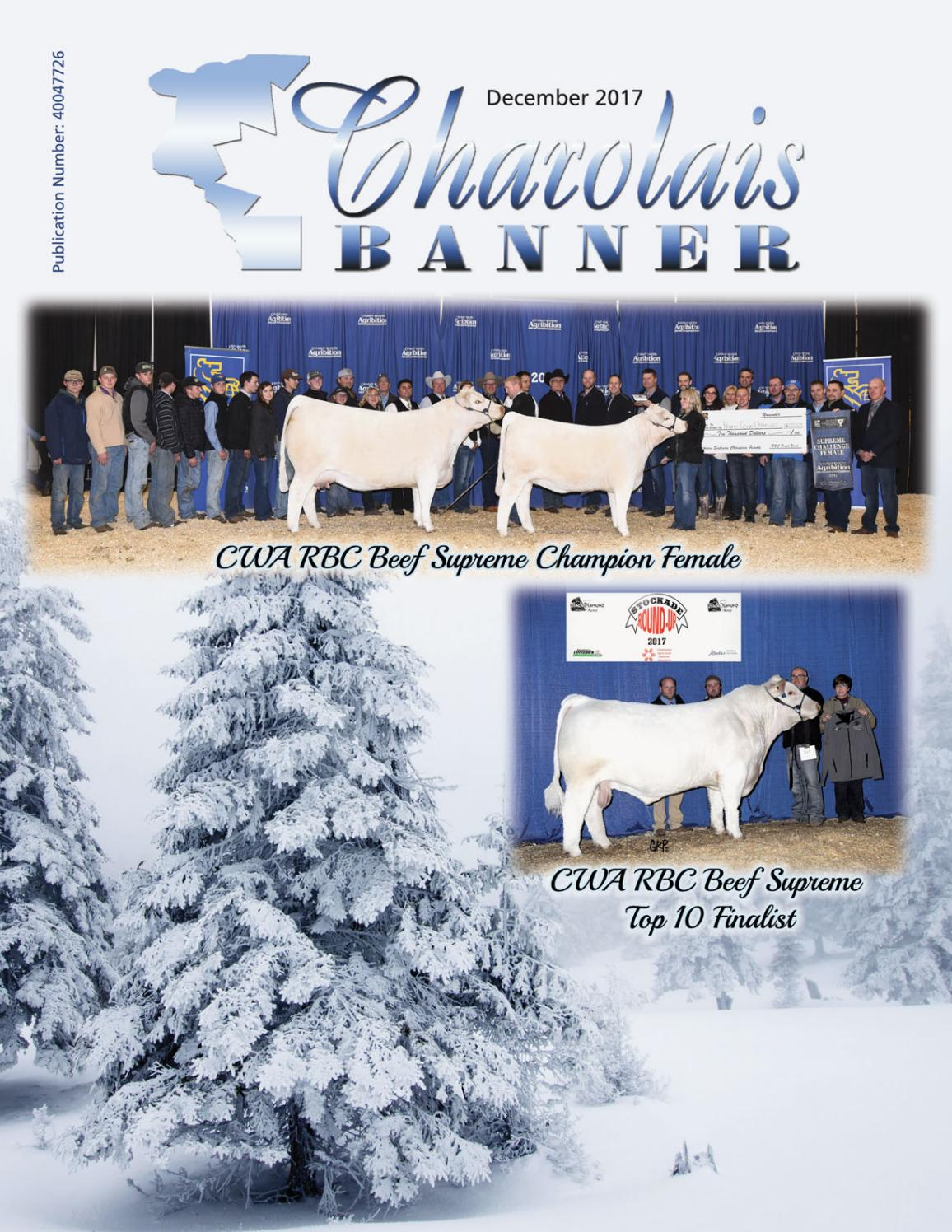 Dec 2017 charolais banner web by Charolais Banner - issuu