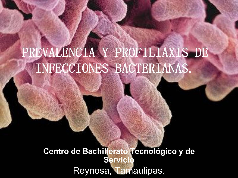 son contagiosas las infecciones bacterianas
