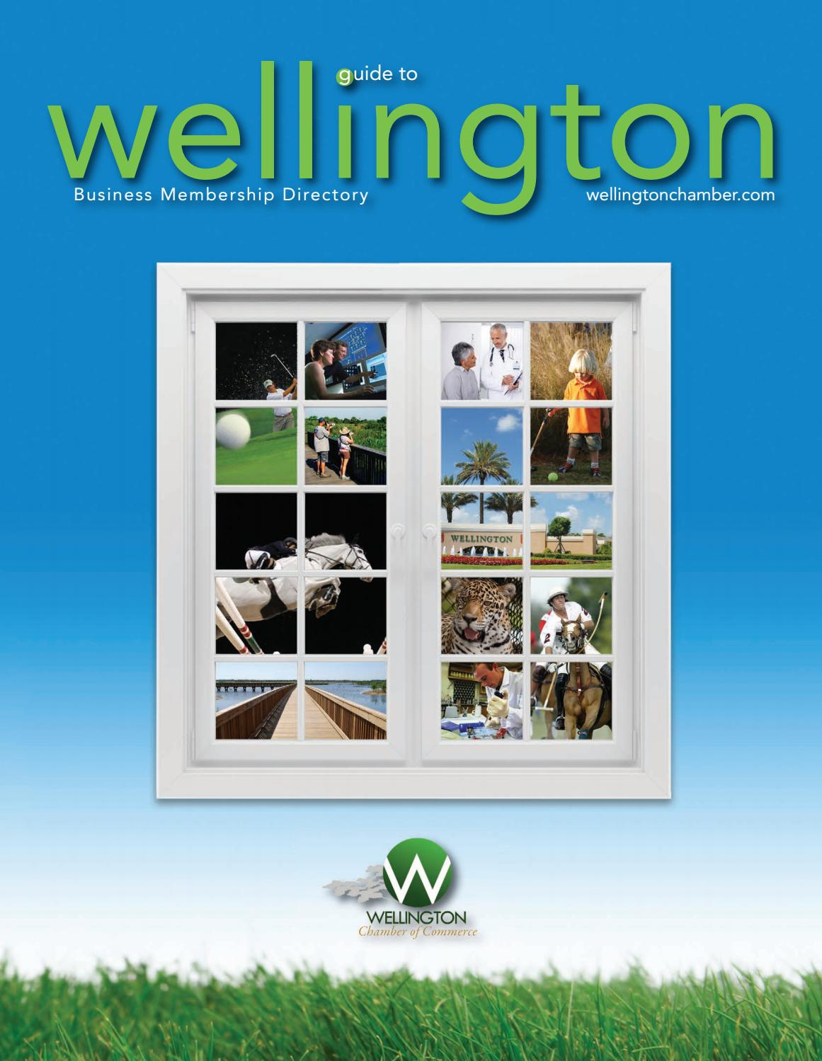 Official Guide to Wellington 2018 by Passport Publications