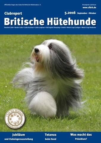Dekoration Achtung Hund,hundeschild,warnschild,gravurschild,12 X 8 Cm,freilaufender Hund Eine GroßE Auswahl An Waren Möbel & Wohnen