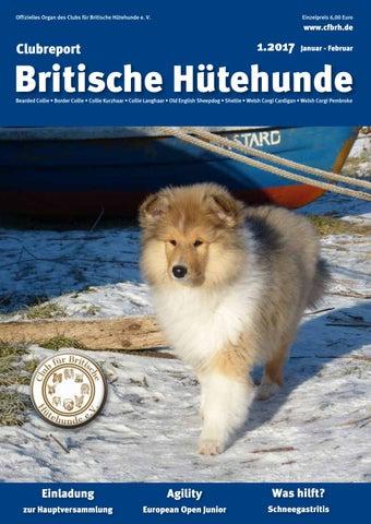 Achtung Hund,hundeschild,warnschild,gravurschild,12 X 8 Cm,freilaufender Hund Eine GroßE Auswahl An Waren Möbel & Wohnen