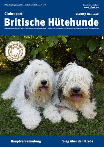 Möbel & Wohnen Achtung Hund,hundeschild,warnschild,gravurschild,12 X 8 Cm,freilaufender Hund Eine GroßE Auswahl An Waren