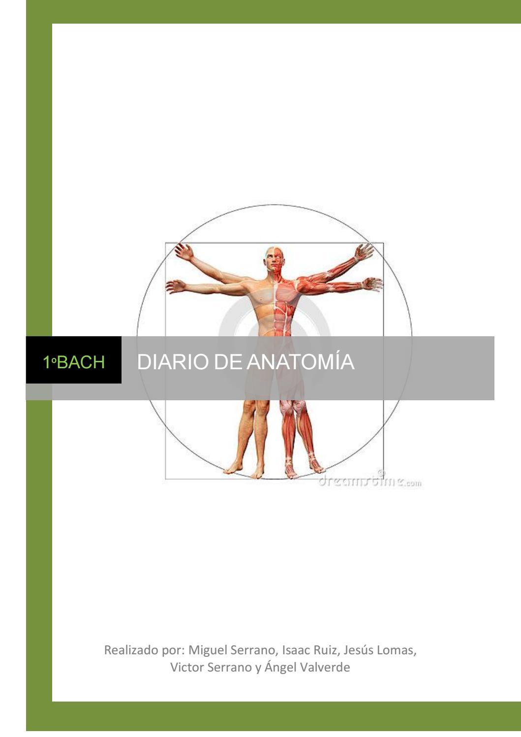 Diario de anatomía by Grupo anatomía - issuu