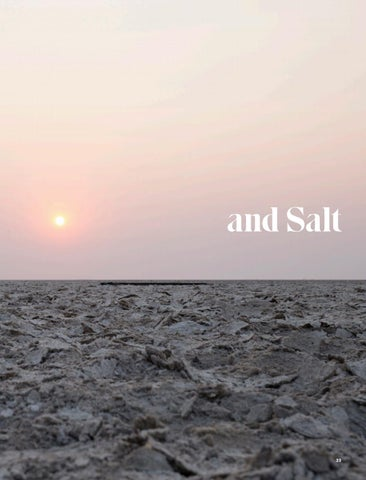 Page 25 of Safari, Solitude and Salt