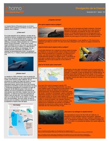 Boletín de Ciencia by horno³ - issuu