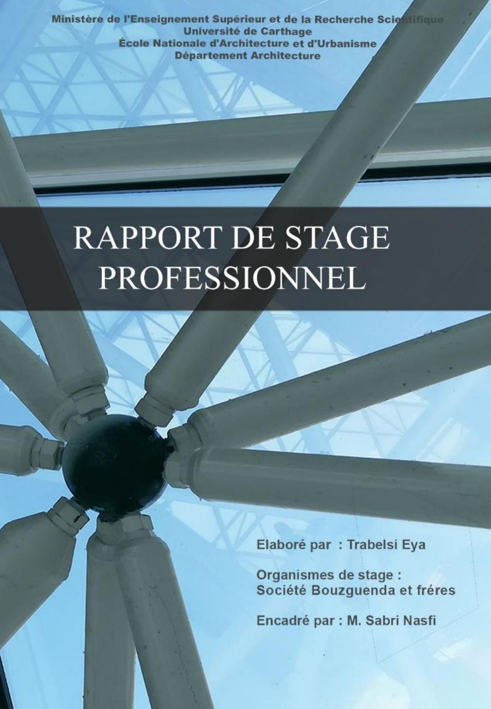 Rapport De Stage Professionnelle Trabelsi Eya By Eya