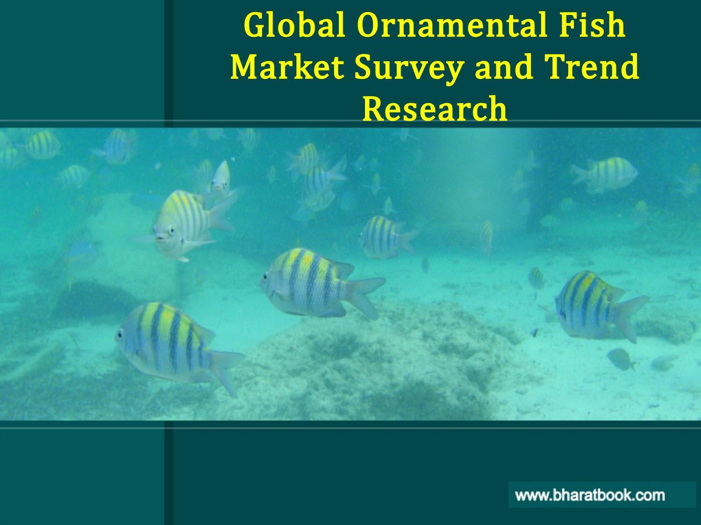 Worldwide Ornamental Fish Market Outlook to 2023 Emerging ...