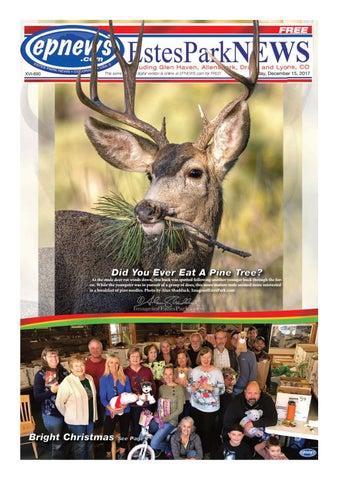 """7"""" Robert Stanley Glass Ornament Gold Aspen Reindeer Wreath Buck Christmas Deer"""