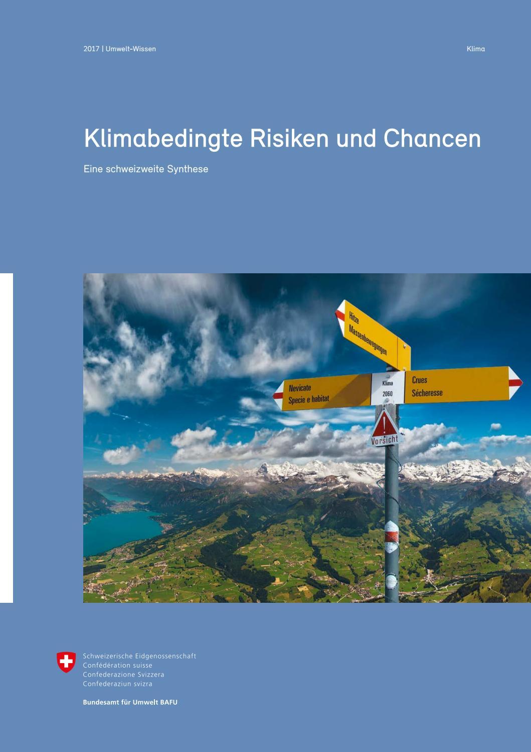 Zürich Und Die Alpen Hell Und Durchscheinend Im Aussehen Sammeln & Seltenes