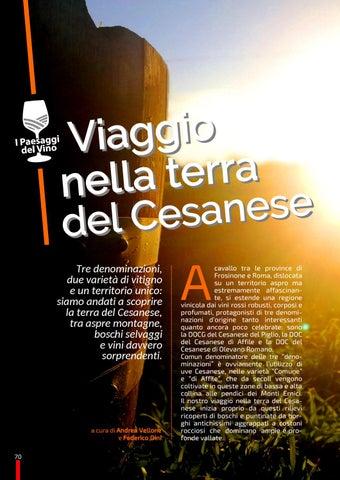 Page 70 of Viaggio nella terra del Cesanese