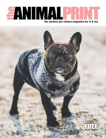 Cool weathernew year issue by animalprint issuu page 1 fandeluxe Choice Image