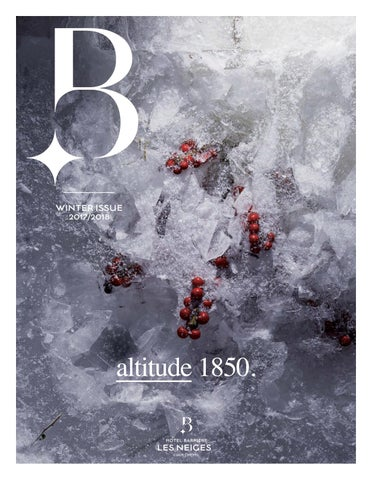 Issuu 2 Les Neiges Barriere Alexandre Benyamine By N° xq0vww7gt