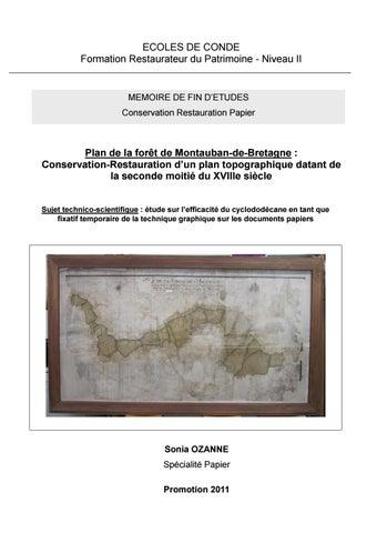 Sonia Ozanne Conservation Restauration D Un Plan Topographique By