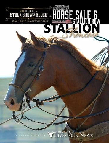 5f085b1af848 Black Hills Stock Show Horse Sale Catalog   Stallion Showcase by Tri ...