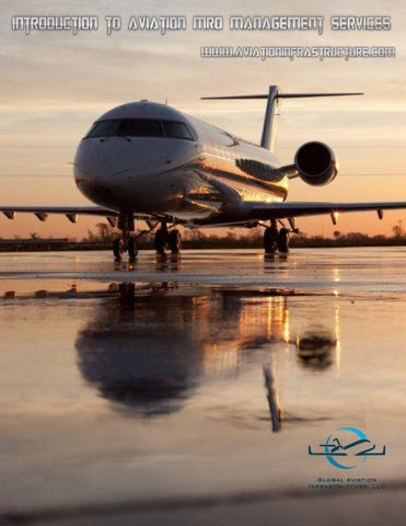 introduction to aviation industry