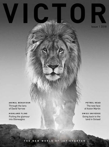 Victor Magazine Issue1 2018 By Victor   Issuu