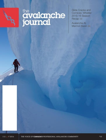 a95591cd4ff The Avalanche Journal vol 113 by The Avalanche Journal - issuu