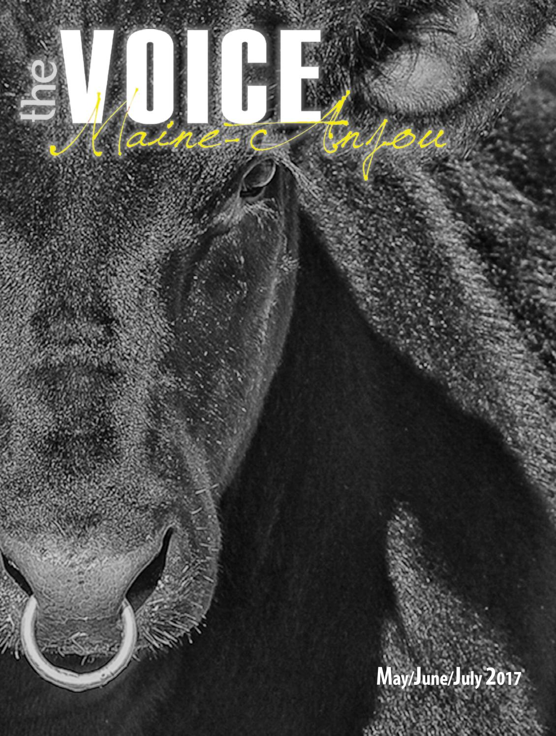 Voice May June July 2017 by EDJE - issuu