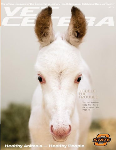 Vet cetera winter 2017 by Oklahoma State - issuu