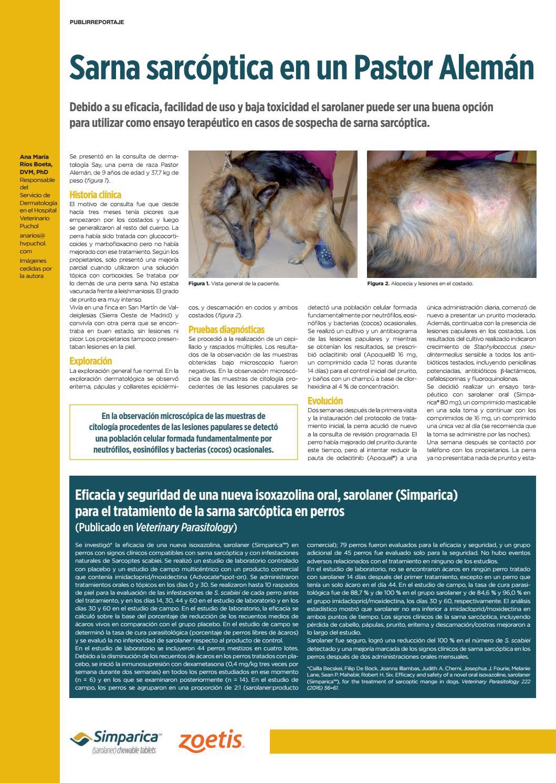 sarna sarcoptica veterinaria tratamiento