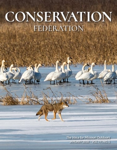 January 2018 vol 79 no 1 by Conservation Federation - issuu