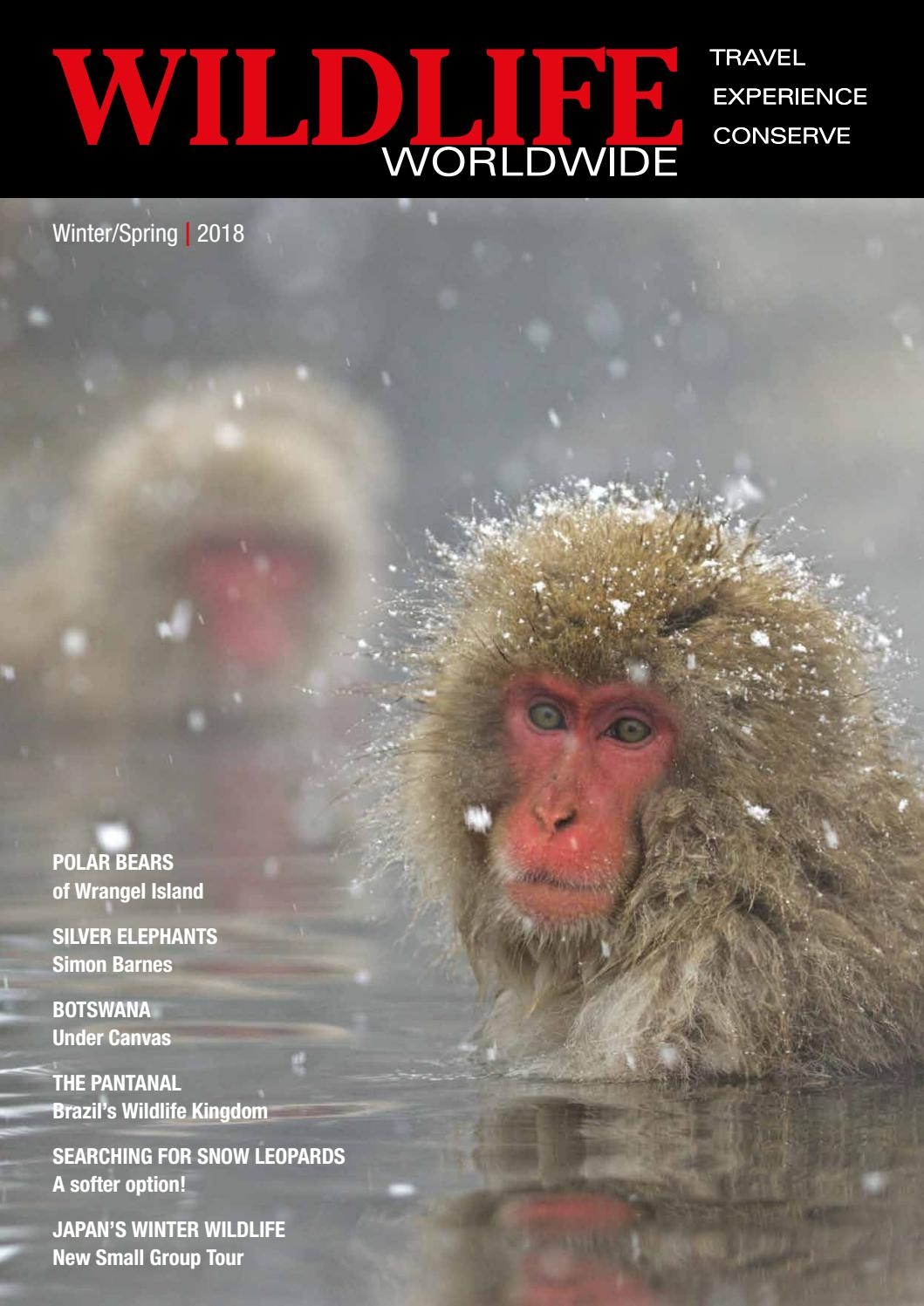 Wildlife Worldwide Brochure Winter /Spring 2018 by The Natural Travel  Collection Ltd - issuu