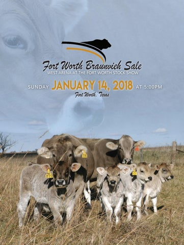 2018 Fort Worth Braunvieh Salebook By Cattle In Demand Issuu