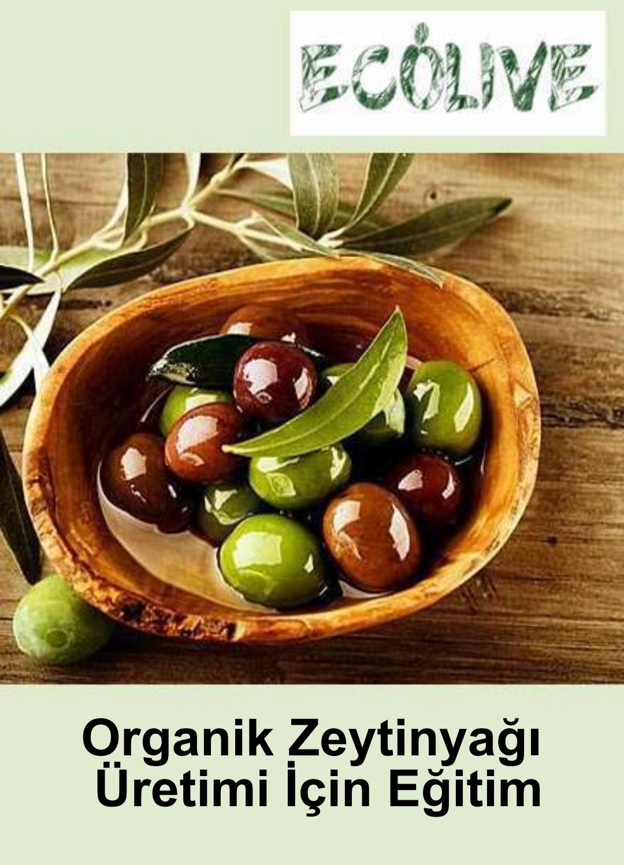 Aşırı kan yapan besinler ile Etiketlenen Konular