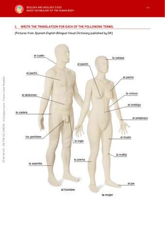 ESO3 Basic Vocabulary of the Human Body by Víctor Gil García - issuu