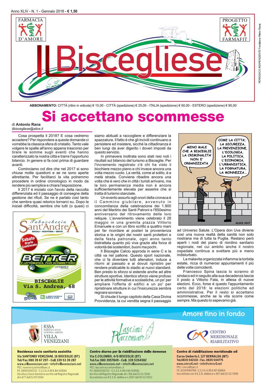 Di Pinto Bisceglie Materiale Edile gennaio by piùbaidea - issuu