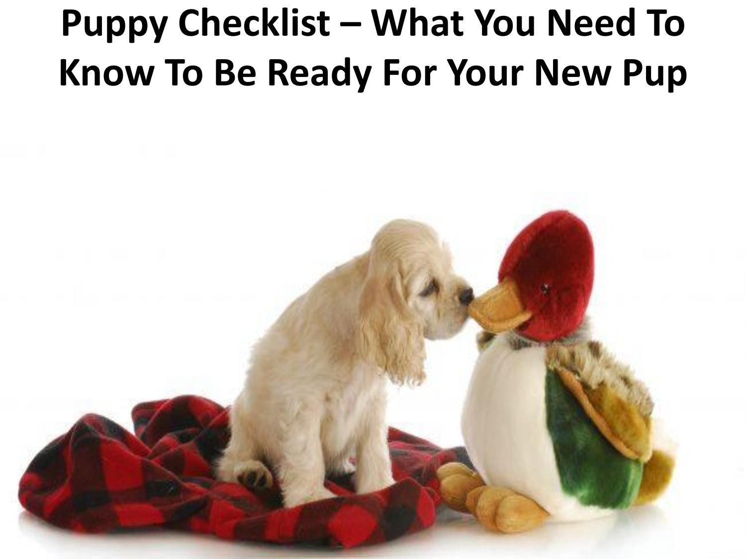 Puppy Checklist What You Need To Know To Be Ready For Your New Pup By Nuvet Plus Reviews Issuu