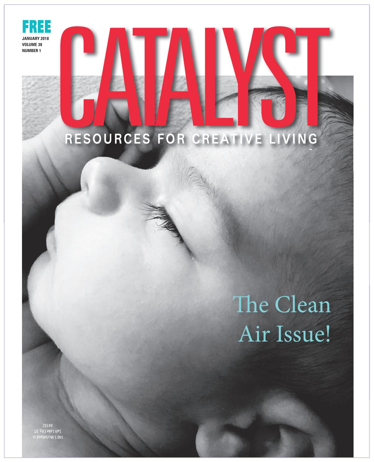 80135aa224 CATALYST January 2018 by CATALYST Magazine - issuu