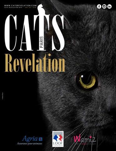 255517ea3c1d Cats Revelation Numéro 1 by jegou - issuu