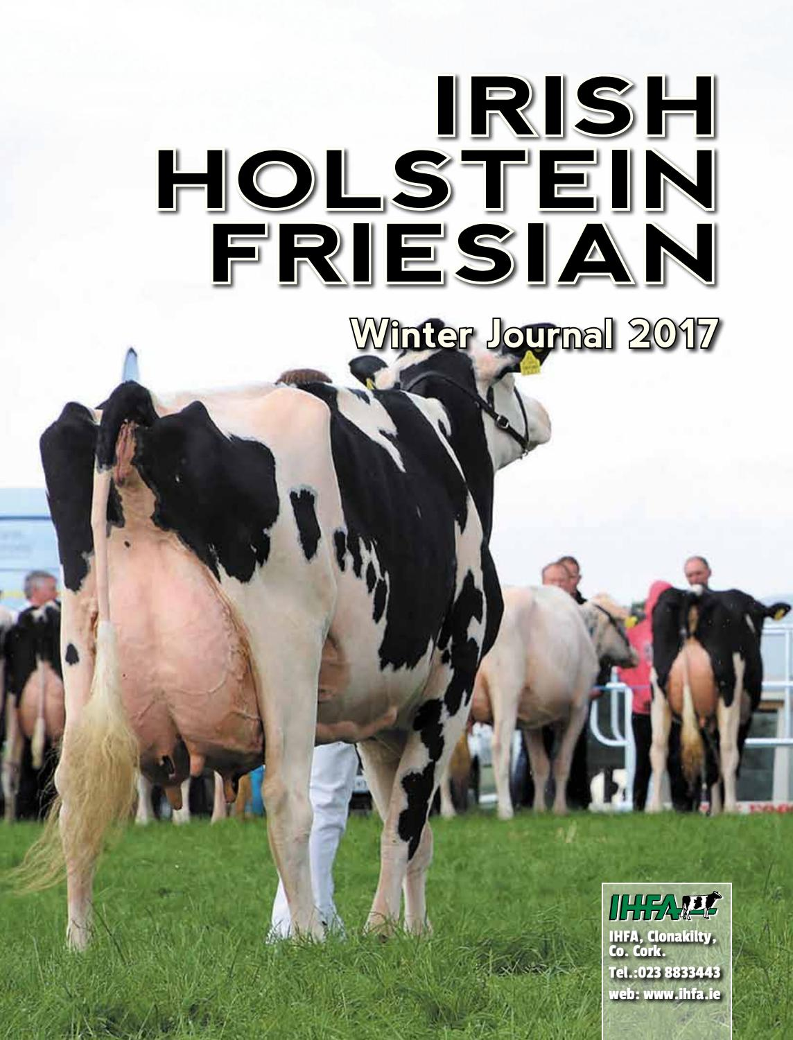 And the Holstein cow will treat us with milk