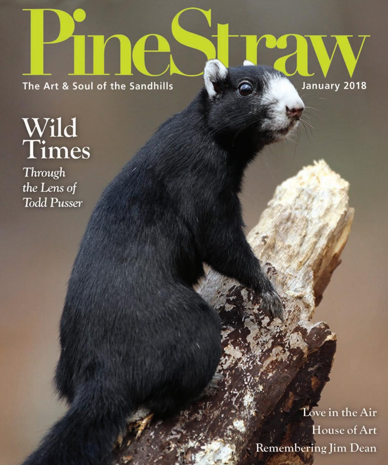 January PineStraw 2018 by PineStraw Magazine - issuu