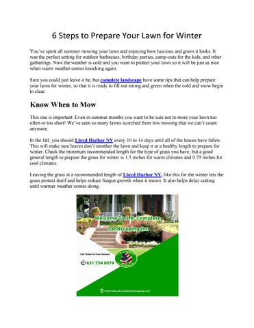 6 Steps to Prepare Your Lawn for Winter You've spent all summer mowing your  lawn and enjoying how luscious and green it looks. It was the perfect  setting ...