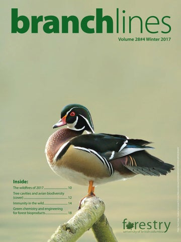 Branchlines Vol 28 No 4 - Winter 2017 by UBC Faculty of Forestry - issuu