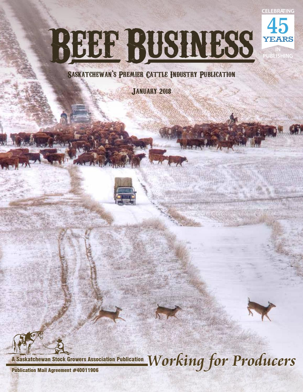 Beef business january 2018 by saskatchewan stock growers beef business january 2018 by saskatchewan stock growers association issuu aiddatafo Image collections