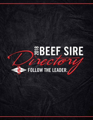 2018 Beef Sire Directory by Kim West - issuu 5dbe4cb0a1d1